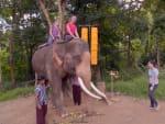 Racing Through Thailand - The Amazing Race