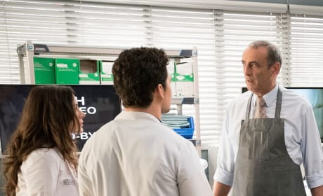 DeLuca Dilemma - Tall - Grey's Anatomy Season 15 Episode 17
