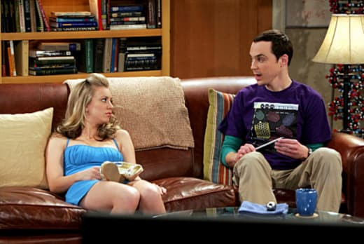 The Big Bang Theory Season  Sheldon S Cats