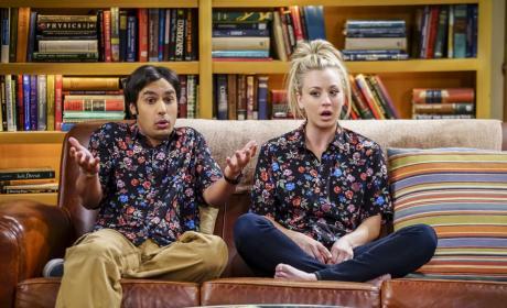 We're Twins! - The Big Bang Theory Season 10 Episode 19