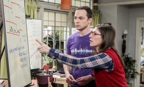 Sheldon and Amy Work Together - The Big Bang Theory Season 10 Episode 19