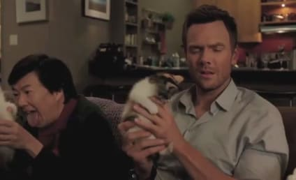 Community Season Premiere Clip: Christmas Cats!