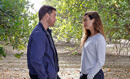 NCIS: Cote de Pablo's Return as Ziva Extended to Multiple Season 17 Episodes