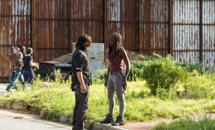 The Walking Dead Renewed for Season 9, New Showrunner Announced