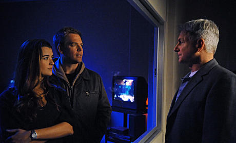 Gibbs, Tony and Ziva Pic