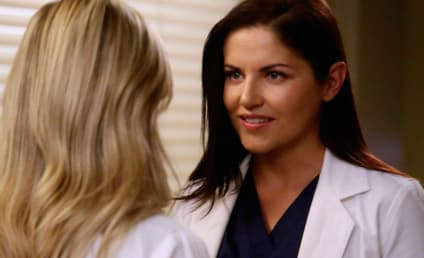 Grey's Anatomy Season 13 Episode 11 Review: Jukebox Hero