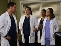 Grey's Anatomy Season 12 Episode 10