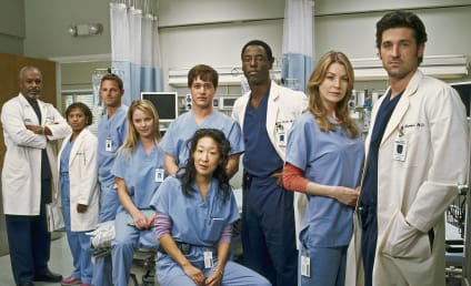 Must-See Grey's Anatomy Episodes From Every Season