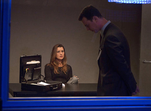 Cote de Pablo as Ziva