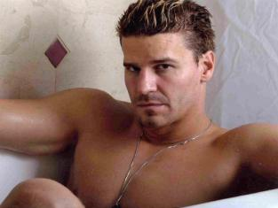 David Boreanaz Shirtless