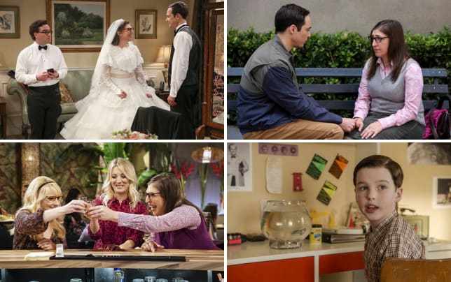 The wedding plan the big bang theory