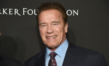 Arnold Schwarzenegger Joins Cast of Amazon Drama Series: Get the Details!