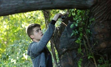Tree Climbing - Pretty Little Liars Season 5 Episode 20