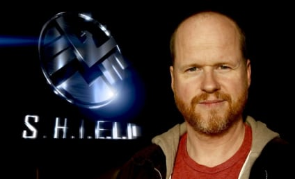 S.H.I.E.L.D. Television Series Unveils Quintet of Characters