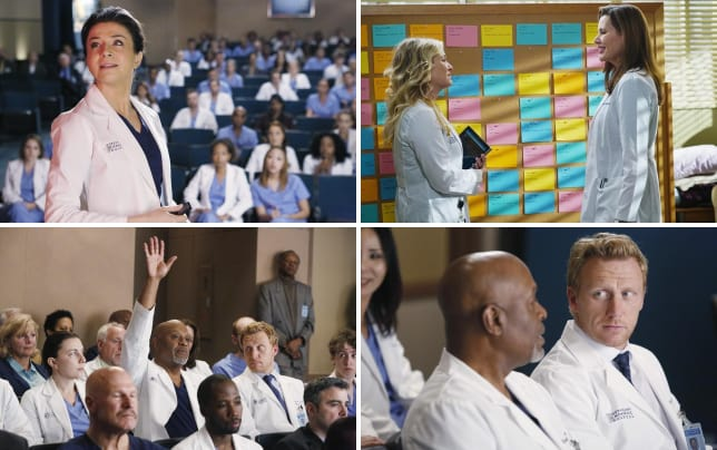 Class in session greys anatomy s11e13