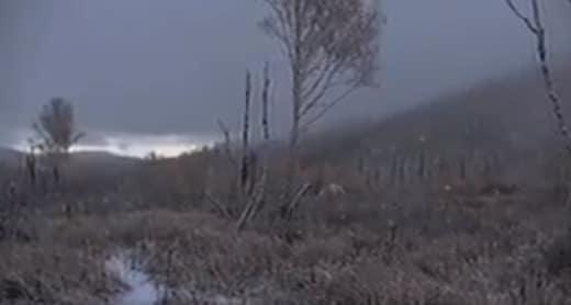 Winter is Coming - Alone Season 5 Episode 8