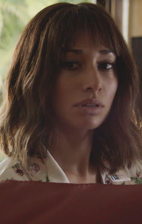 Simpler Times - Hawaii Five-0 Season 9 Episode 20