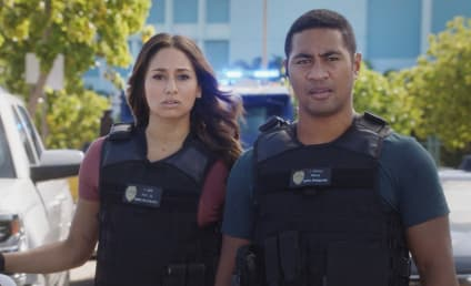 Watch Hawaii Five-0 Online: Season 8 Episode 13