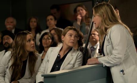 Oopsies! - Grey's Anatomy Season 14 Episode 20