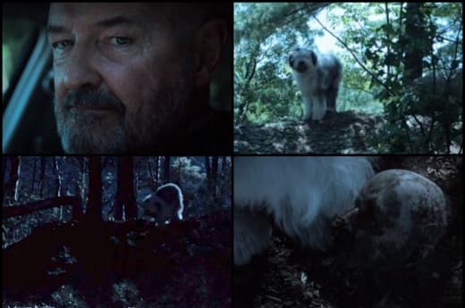 Dale's Dog - Castle Rock Season 1 Episode 1