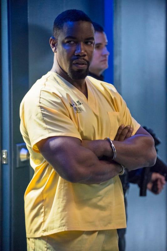 """Michael Jai White as Ben """"Bronze Tiger"""" Turner"""