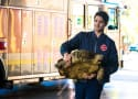 Chicago Fire Season 4 Episode 8 Review: When Tortoises Fly