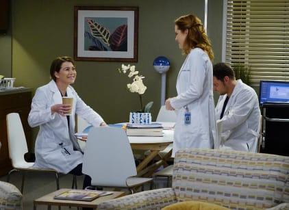 Watch Grey's Anatomy Season 13 Episode 15 Online