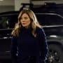 Nikki Staines Returns - Law & Order: SVU Season 20 Episode 24