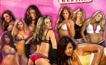 WWE Divas to Guest Star on Project Runway