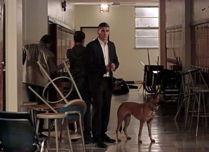 Watch Person of Interest Season 4 Episode 8 Online
