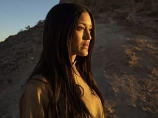 Ghost Nation's Origins - Westworld