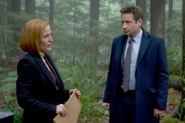 Animal Attack - The X-Files