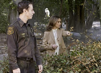 Watch The Ghost Whisperer Season 4 Episode 14 Online