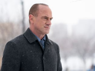 Det. Stabler Returns - Law & Order: Organized Crime