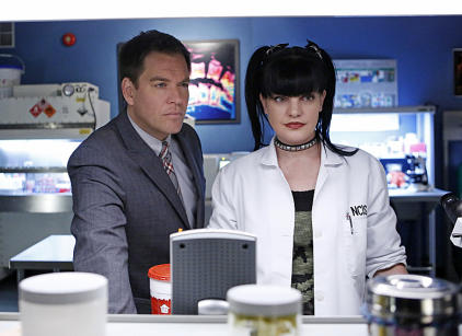 Watch NCIS Season 11 Episode 14 Online