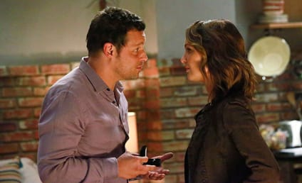 Grey's Anatomy Spoilers: Major Season 13 Storyline... Revealed!