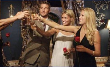 The Bachelor Field: Brad Womack's Final Four