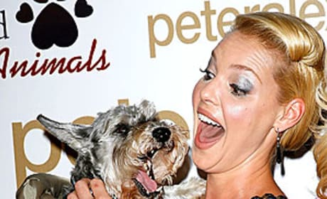 Katherine Heigl and Puppy