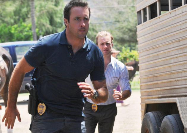 McGarrett & Danny Investigate