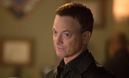 Gary Sinise to Anchor Criminal Minds Spinoff