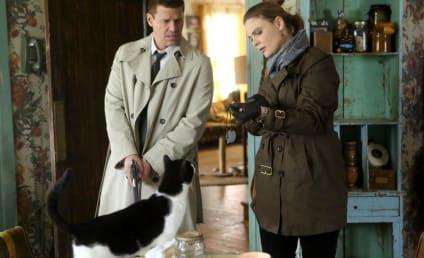 Watch Bones Online: Season 11 Episode 13