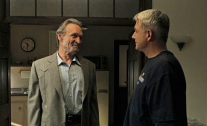 Muse Watson (Mike Franks) to Return on NCIS Premiere