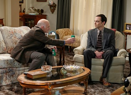 Watch The Big Bang Theory Season 7 Episode 9 Online