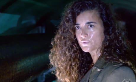 NCIS Season 17 Trailer Reveals Why Ziva is Back
