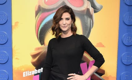Cobie Smulders to Star in ABC Pilot Based on Stumptown Graphic Novel