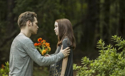 The Originals Season 4: Which Former Character Is Returning?!?