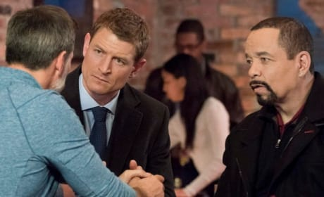(TALL) Stone and Fin - Law & Order: SVU Season 20 Episode 9