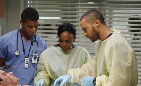 Shane, Jackson and Co.