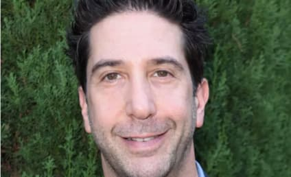 Friends Star David Schwimmer Apologizes for Diversity Comments: 'I Didn't Mean to Imply Living Single Hadn't Existed'