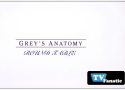 "Grey's Anatomy Round Table: ""Perfect Little Accident"""
